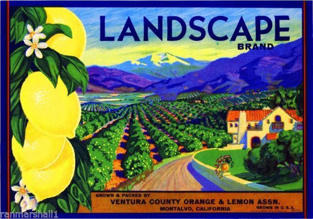 LandscapeLabel